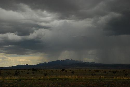 when it rains, Bodega pours!